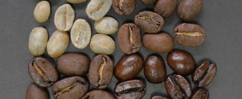 blog-header-beans-roasted